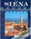 All Siena: the contrade and the palio